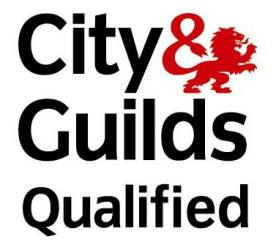 City and Guilds Qualified Plasterer